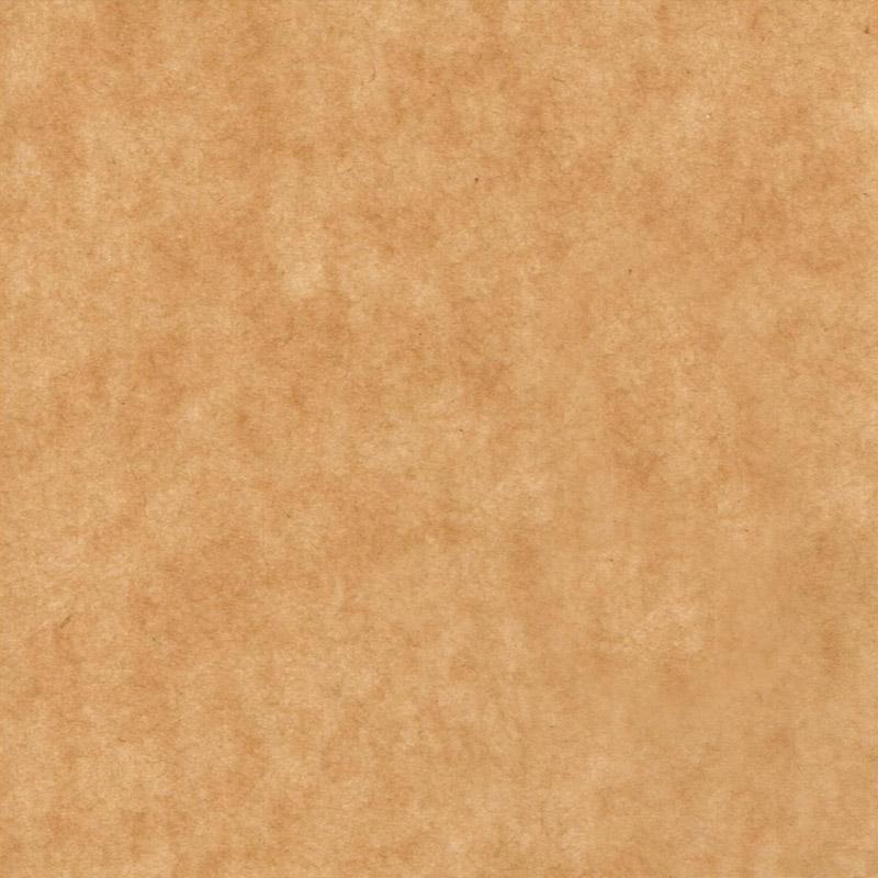 蝋引きパラフィン紙 50g
