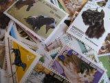 ★STEP1★世界の古切手シリーズ イヌ 10枚セット
