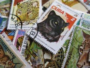 画像1: ★STEP1★世界の古切手シリーズ ワイルドキャット 10枚セット